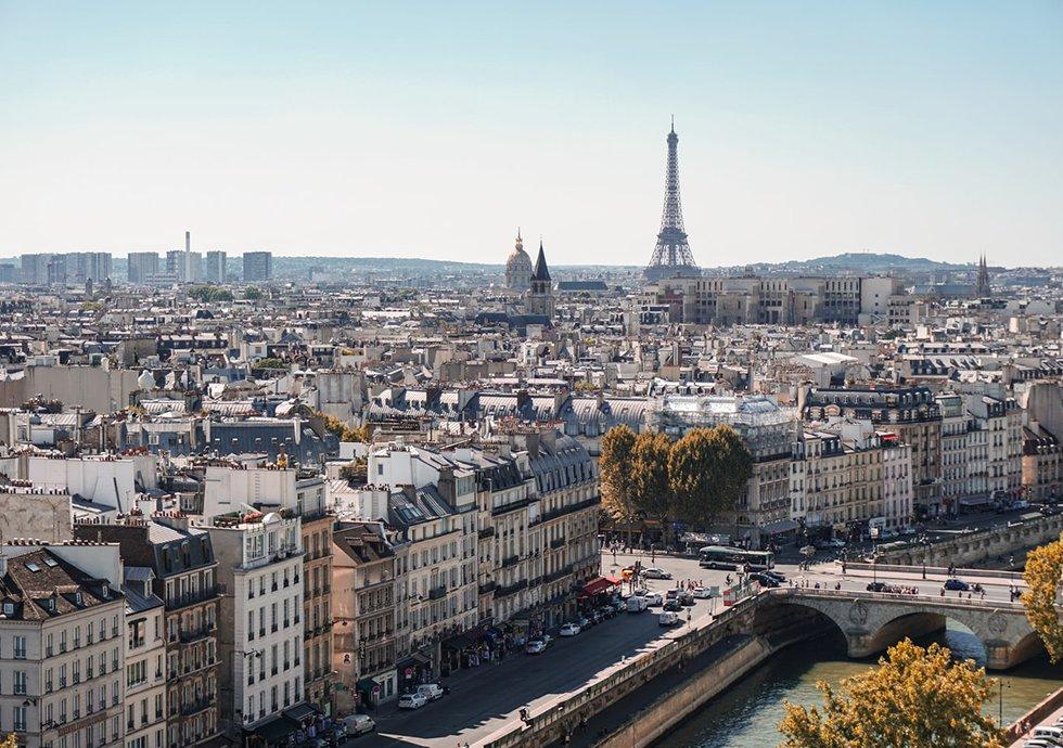Nowlapins Lapin Nain Paris Appartement Urbain Ville